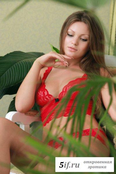 Брюнетка в сексуальном красном белье