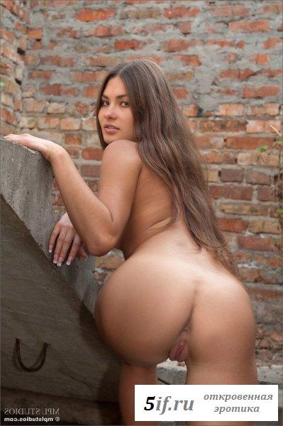 Длинноногая самка у кирпичной стены