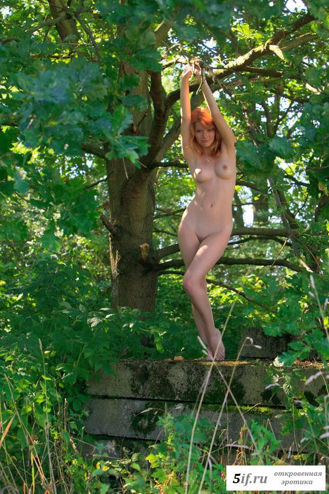 Жизнерадостное фото раздетой девки в саду (31 фото эротики)